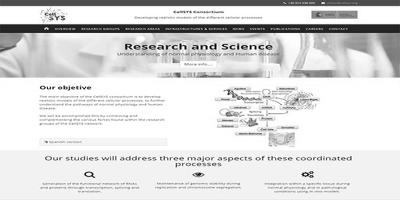 Consorcio Cellsys. Nuevo proyecto web